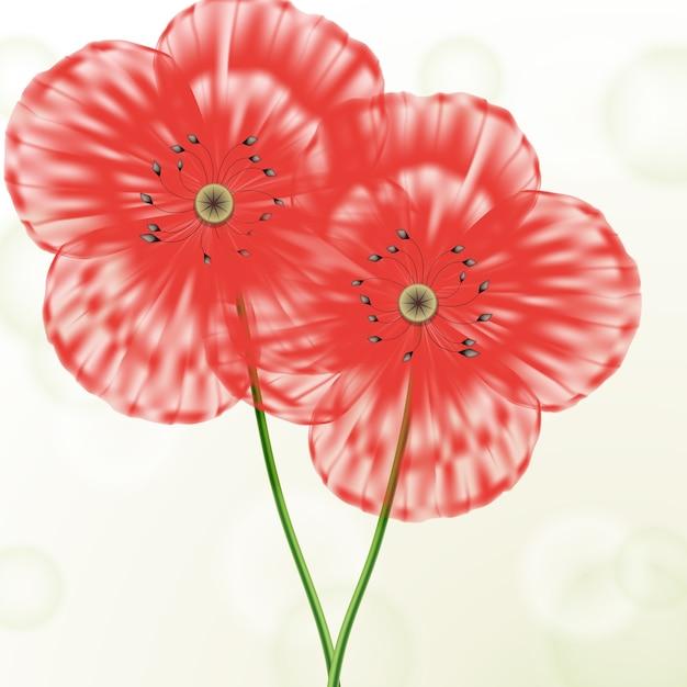 Wiosna Koncepcja Kwiatowy Tło Z Czerwonymi Makami Darmowych Wektorów