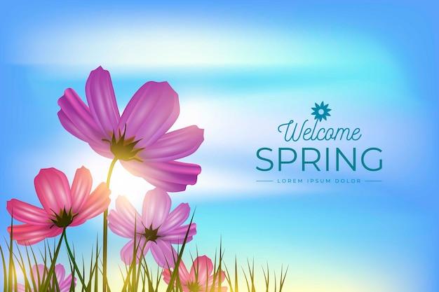 Wiosny Tło Z Niebem I Kwiatami W Polu Darmowych Wektorów
