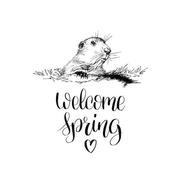 Witaj Wiosenny Napis Odręczny. Premium Wektorów