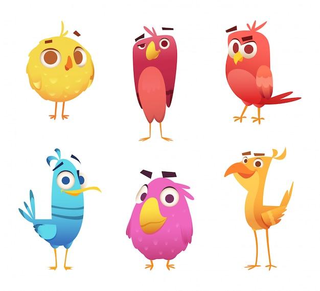 Wściekłe ptaki kreskówek. orły kurze twarze zwierząt kanaryjskich i pióra gry postaci kolorowych ptaków Premium Wektorów