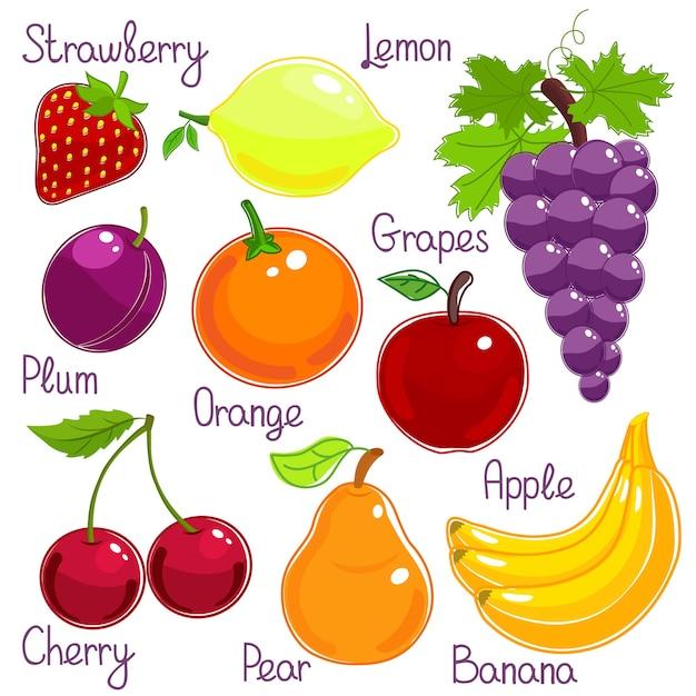 Wybór świeżych Całych Kolorowych Owoców Tropikalnych Z Etykietami Darmowych Wektorów
