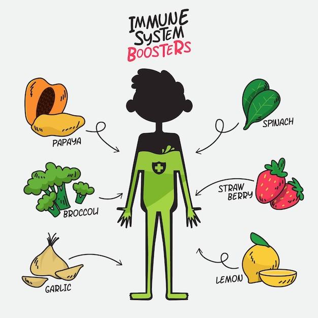 Wzmacniacze Układu Odpornościowego Z Owocami I Warzywami Darmowych Wektorów