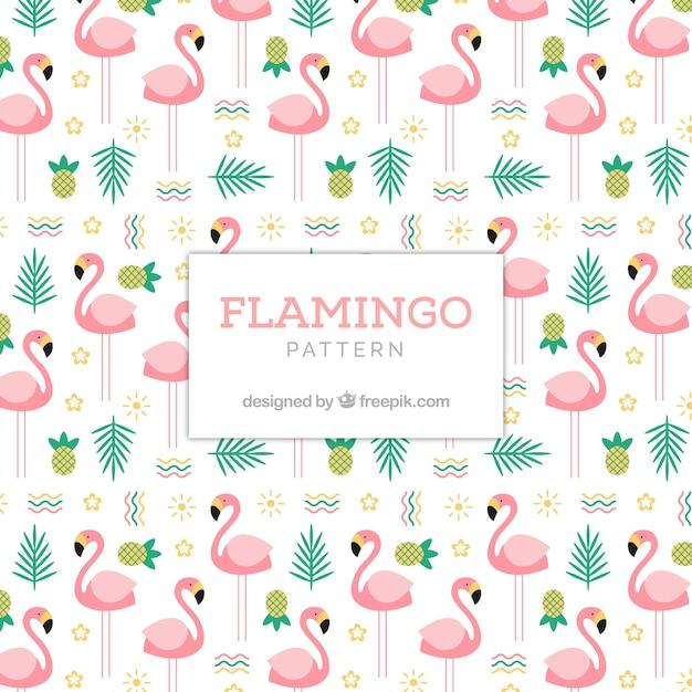 Wzór Lato Flamenco Darmowych Wektorów