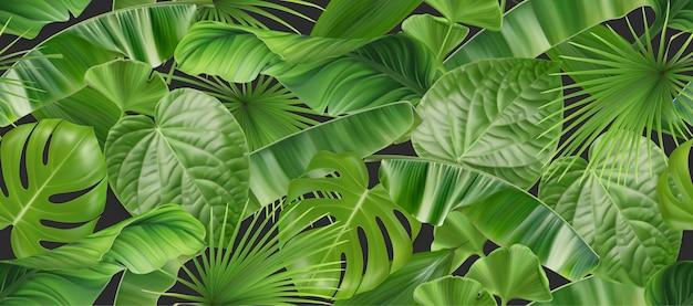 Wzór Liści Dżungli, Realistyczne Tło Wektor 3d Premium Wektorów