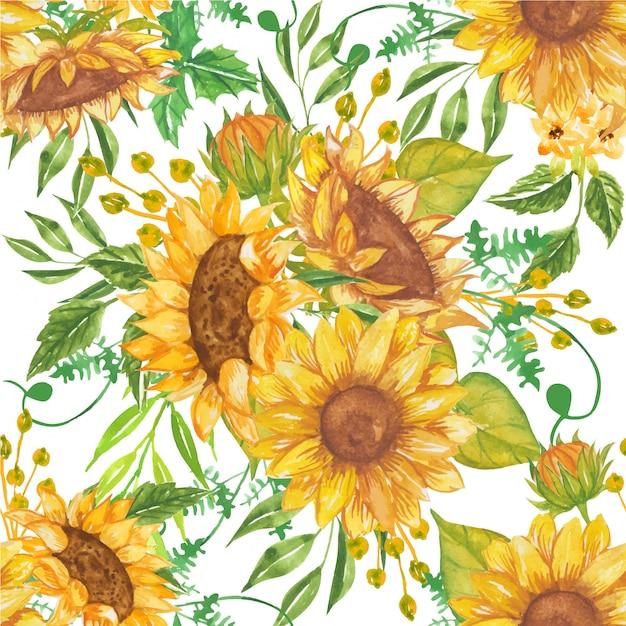 Wzór Piękne Akwarela żółte Słoneczniki Premium Wektorów