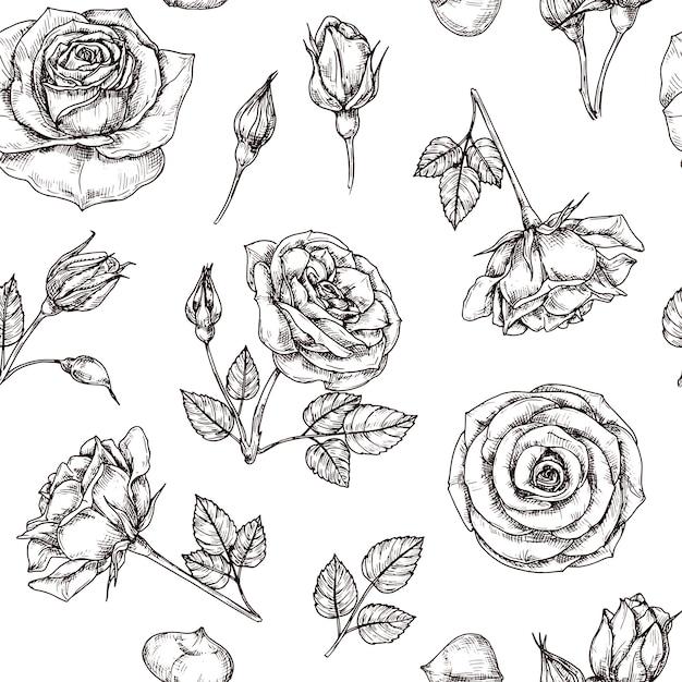 Wzór Róż. Ręcznie Rysowane Motyw Kwiatowy Róży. Kwiat Tkaniny Powtórzyć Wektor Vintage Premium Wektorów
