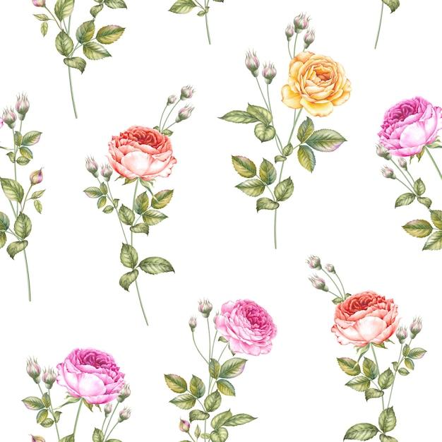 Wzór róż Premium Wektorów