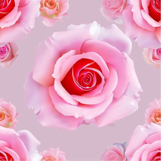 Wzór różowa róża Premium Wektorów