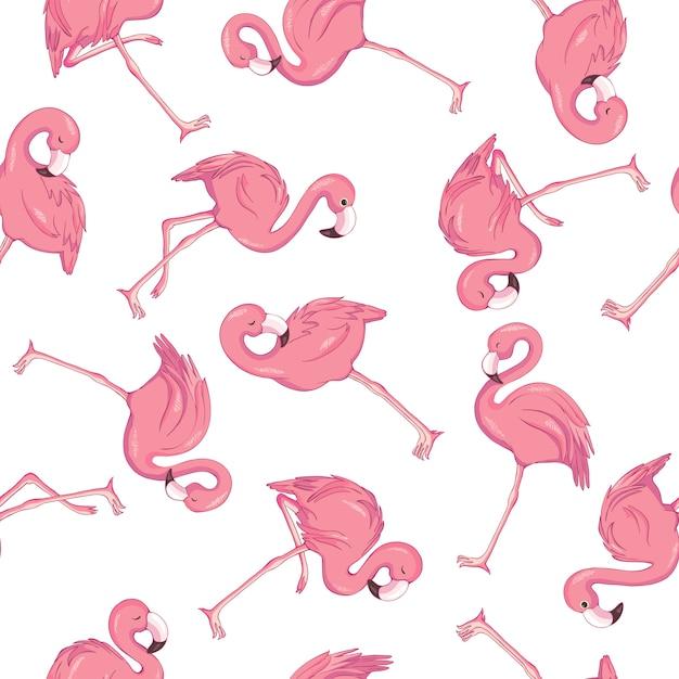 Wzór tropikalny flamingo Premium Wektorów