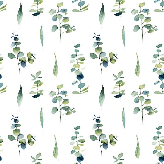 Wzór Z Gałęzi Eukaliptusa Akwarela I Zielonych Liści Premium Wektorów