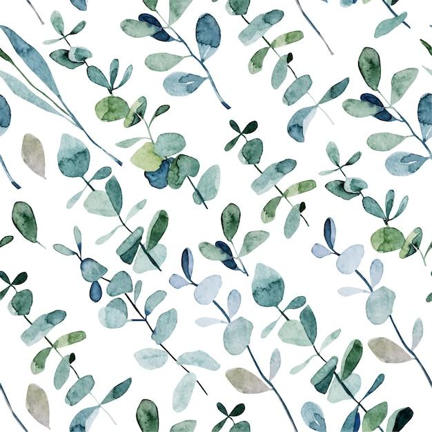 Wzór Z Gałęzi Eukaliptusa Akwarela, Ręcznie Rysowane Ilustracja Na Białym Tle Premium Wektorów