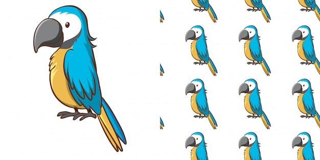 Wzór Z Niebieską Papugą Darmowych Wektorów