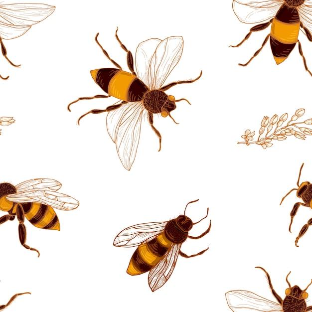 Wzór Z Pszczół Miodnych I Gałęzi Akacji Premium Wektorów