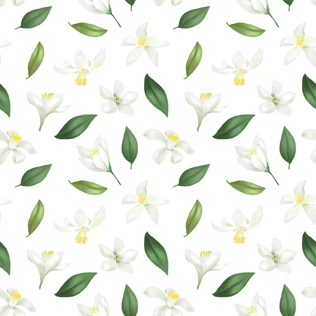Wzór Z Ręcznie Rysowane Zielonych Liści I Kwiatów Cytryny (limonka) Na Białym Tle Premium Wektorów