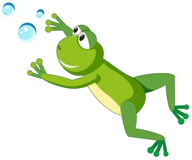 Żaba znak na białym tle Premium Wektorów