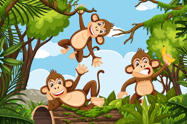 Zabawne małpy na scenie dżungli Premium Wektorów