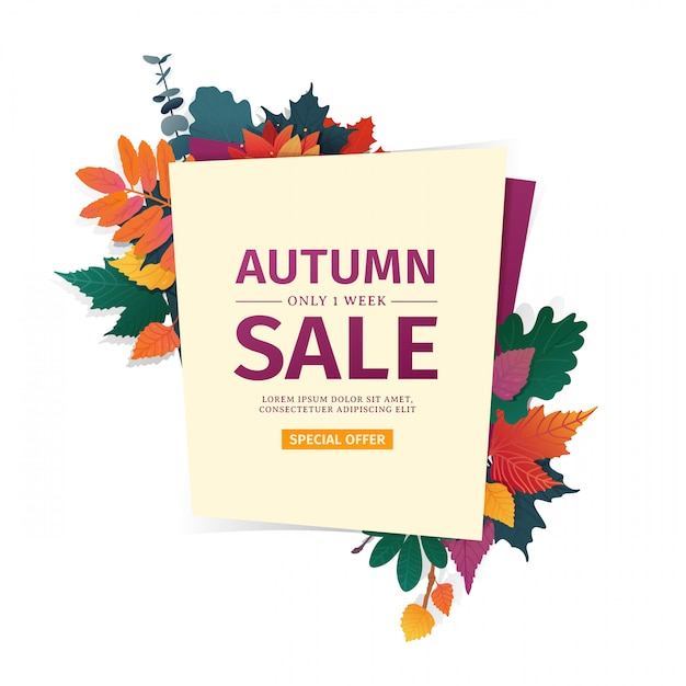 Zaprojektuj Baner Z Logo Jesiennej Sprzedaży. Karta Rabatowa Na Sezon Jesienny Z Białą Ramką I Ziołem Premium Wektorów
