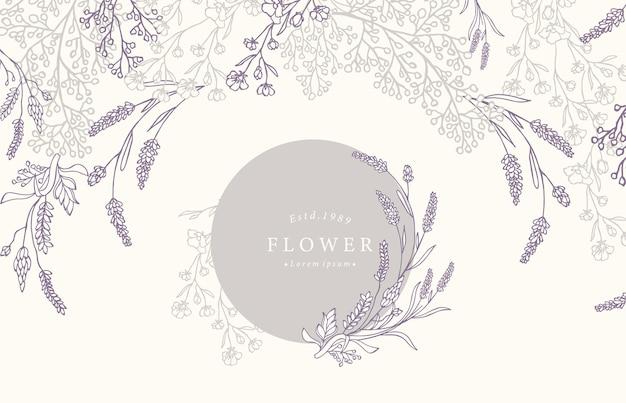 Zbiór Kwiatów Tła Z Lawendy Premium Wektorów