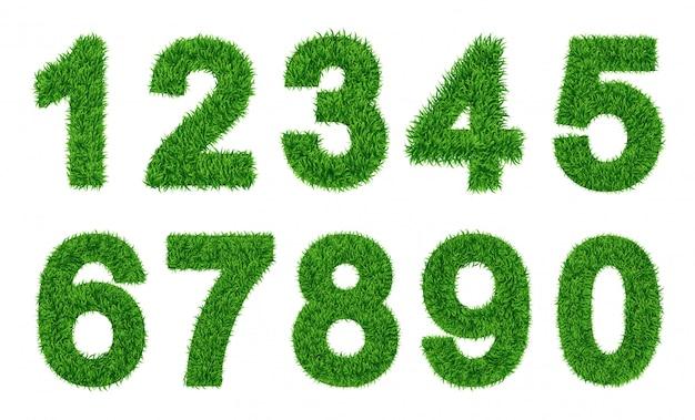 Zbiór liczb. zielona trawa wypełniła postać. zero do dziewięciu, liczby. ilustracje wektorowe Premium Wektorów