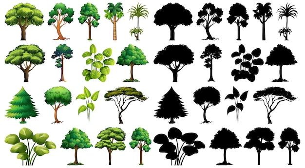 Zbiór Roślin I Drzew Z Jego Sylwetka Darmowych Wektorów