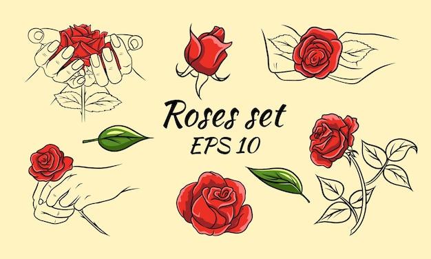 Zbiór Róż, Różyczki I Liści Wyciągnąć Rękę. Czerwone Róże I Linia. Dekoracje I Dekoracje. Premium Wektorów