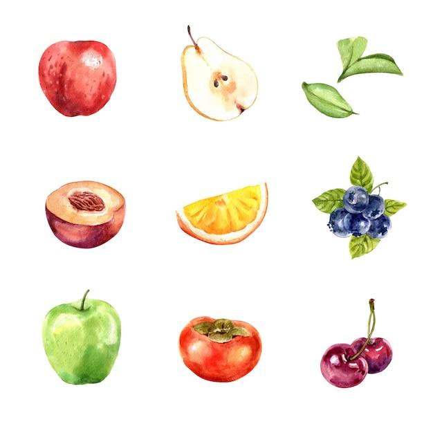 Zbiór różnych owoców na białym tle, akwarela i ręcznie rysowane Darmowych Wektorów