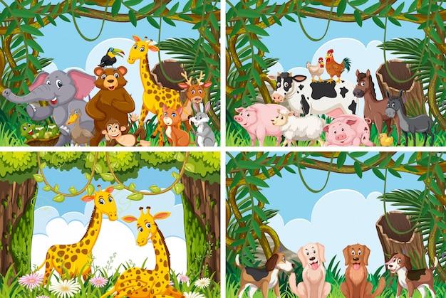Zbiór Różnych Zwierząt W Scenach Przyrodniczych Premium Wektorów