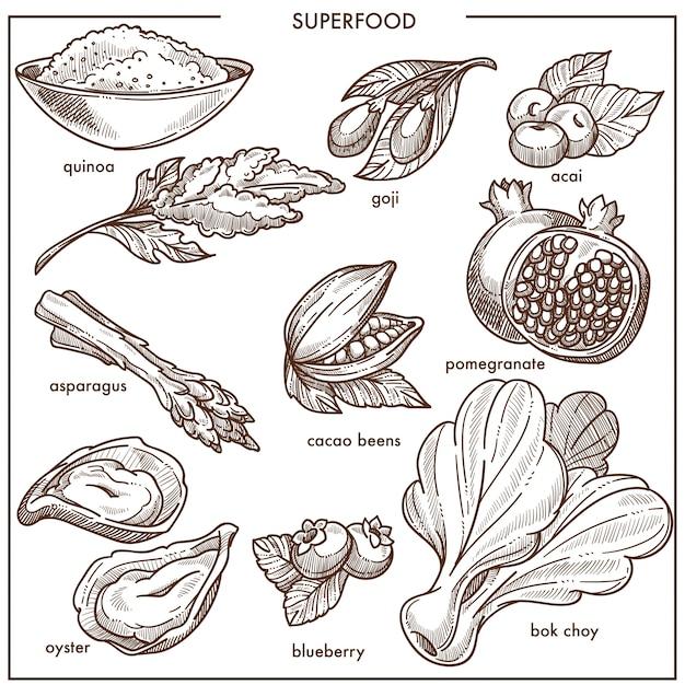 Zdrowe owoce i warzywa Premium Wektorów