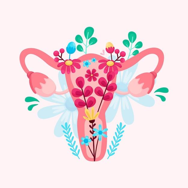 Żeński Układ Rozrodczy Z Kwiatami Darmowych Wektorów