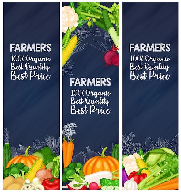 Zestaw banner rolnik organicznych warzyw Premium Wektorów