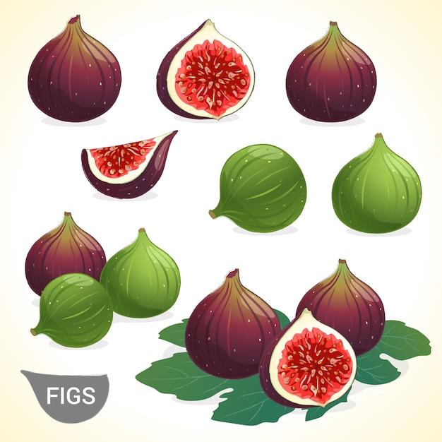 Zestaw Ciemne Figi I Zielone Figi W Różnych Formatach Wektorowych Stylów Premium Wektorów