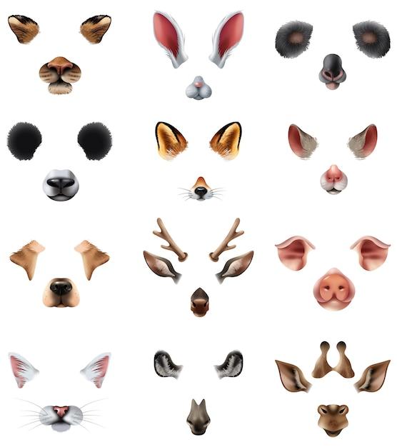 Zestaw Cute Animal Masks Video Chat Zastosowanie Filtrów Efektów Darmowych Wektorów