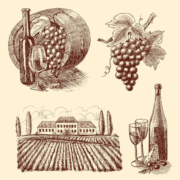 Zestaw dekoracyjny do szkicu wina Darmowych Wektorów
