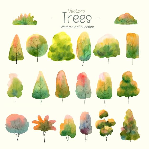 Zestaw drzew akwarela do projektowania lasu Premium Wektorów