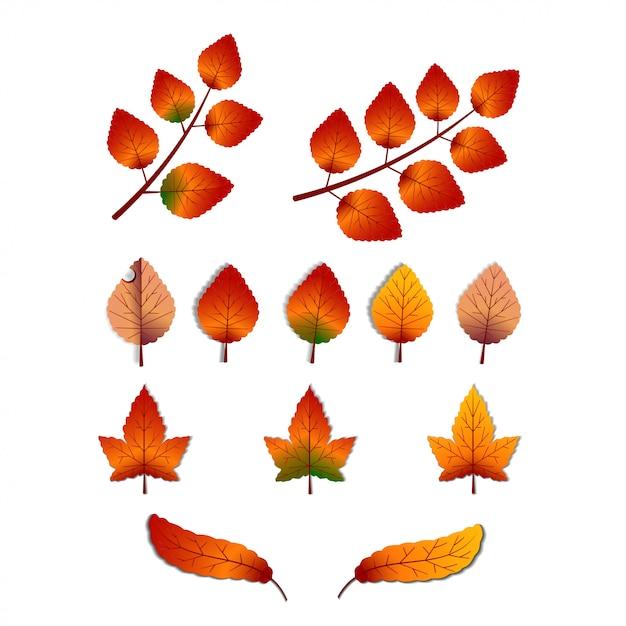 Zestaw Elementów Liści Na Jesień Sezon Jesień Premium Wektorów