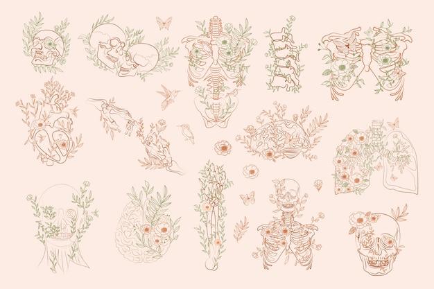 Zestaw Elementów Vintage Floral Anatomy W Jednej Linii. Ludzki Szkielet I Narządy Wewnętrzne Z Kwiatami Premium Wektorów