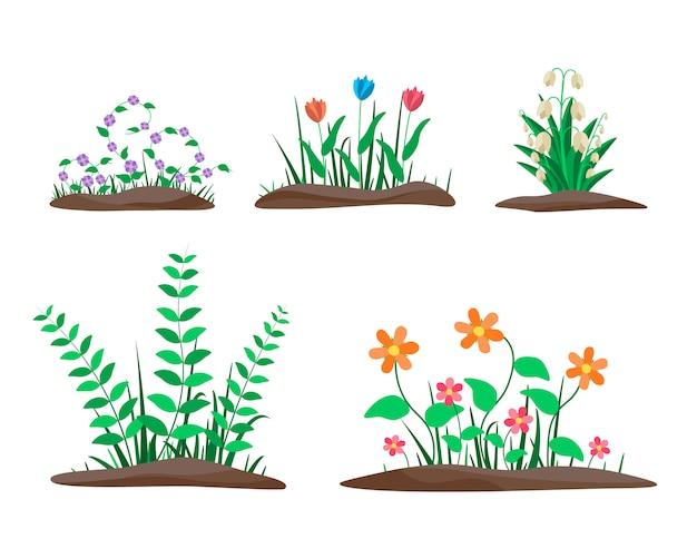 Zestaw Granic Kwiatowych. Wiosenne Kwiaty Rosnące W Ogrodzie. Premium Wektorów