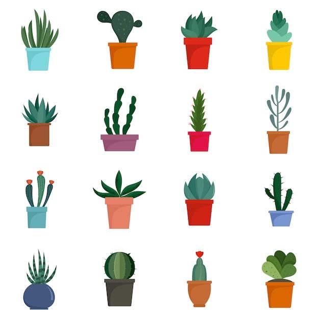 Zestaw ikon kwiaty soczyste i kaktus Premium Wektorów