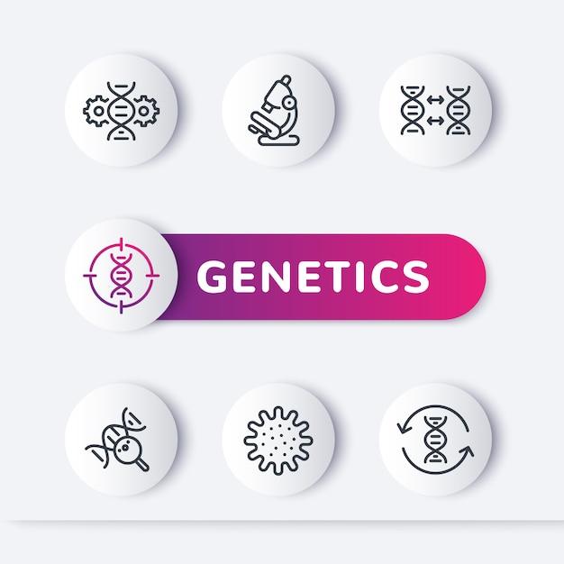 Zestaw Ikon Linii Genetyki, Modyfikacja Genetyczna, Test Dna Premium Wektorów
