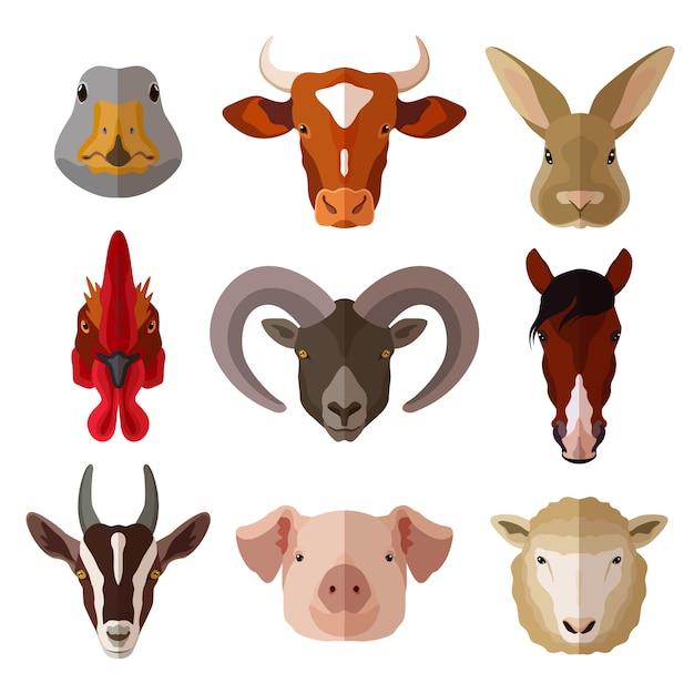 Zestaw ikon płaski portret zwierzę Darmowych Wektorów
