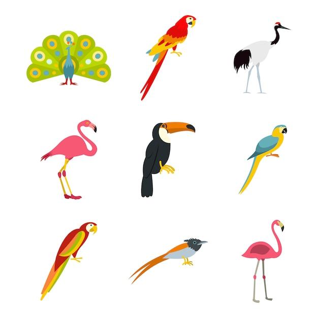 Zestaw Ikon Ptaków Egzotycznych. Płaski Zestaw Egzotycznych Ptaków Wektor Zbiory Ikon Na Białym Tle Premium Wektorów