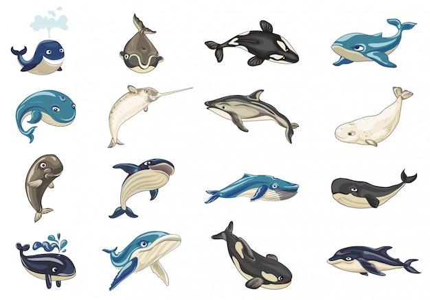 Zestaw Ikon Wielorybów. Kreskówka Zestaw Ikon Wielorybów Premium Wektorów