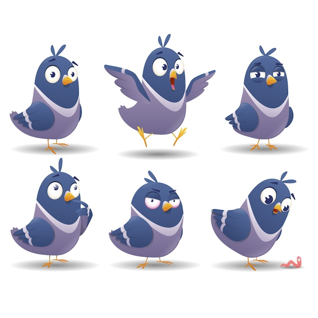 Zestaw Ikon Zestawu Znaków Ptaków Premium Wektorów
