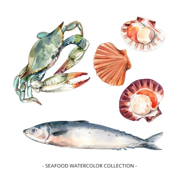 Zestaw Ilustracji Akwarela Niebieski Krab, Muszla, Makrela Do Użytku Dekoracyjnego. Darmowych Wektorów
