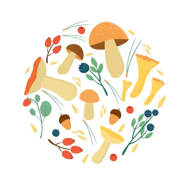 Zestaw jesiennych liści jagód, igieł sosnowych i grzybów. leśne jesienne zbiory Darmowych Wektorów
