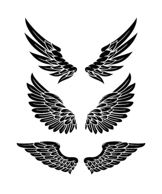 Zestaw Kolekcja Wings Premium Wektorów