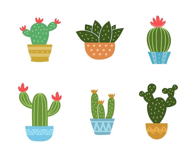 Zestaw Kolekcji Kaktusów. Wektorowa Nowożytna Mieszkanie Stylu Kreskówka. Odosobniony Premium Wektorów