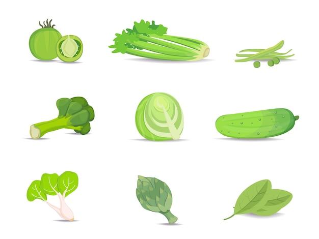 Zestaw Kolekcji Zielonych Warzyw Premium Wektorów