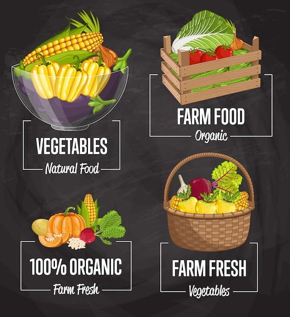 Zestaw koncepcji żywności ekologicznej gospodarstwa Premium Wektorów