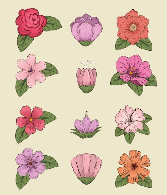 Zestaw kwiatów roślin w stylu liści i płatków Darmowych Wektorów
